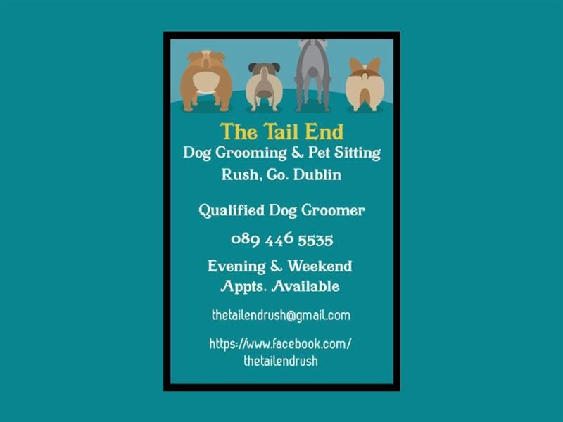 the tail end_001.jpg